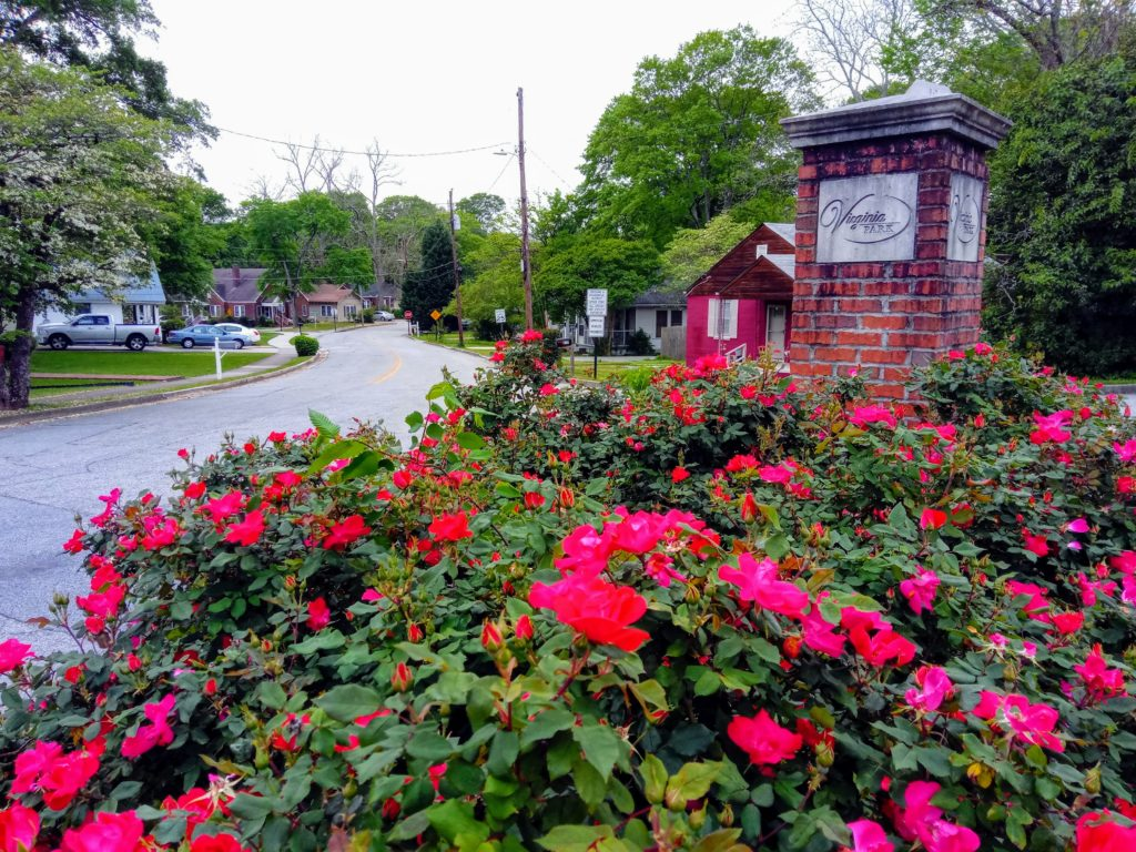 Roses at the entrance of Virginia Park